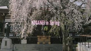 Yujikudo.comさんが動画「小金井春秋」を公開されました